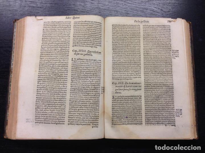 Libros antiguos: LIBRO DE AGRICULTURA, TRATADO LABRANZA, DE ALONSO DE HERRERA, 1605 - Foto 4 - 166596950