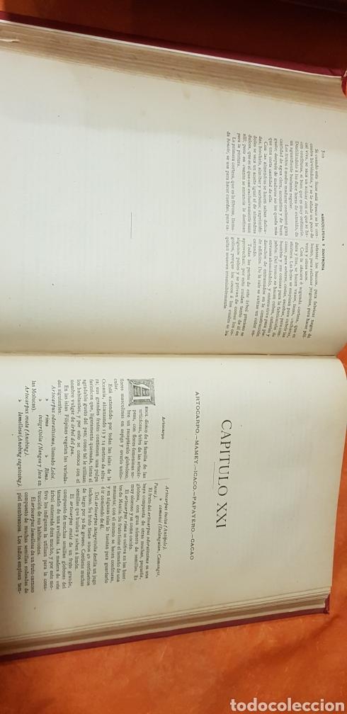 Libros antiguos: TRATADO DE AGRICULTURA Y ZOOTECNICA,5 TOMOS COMPLTA,1889- - Foto 13 - 168457249