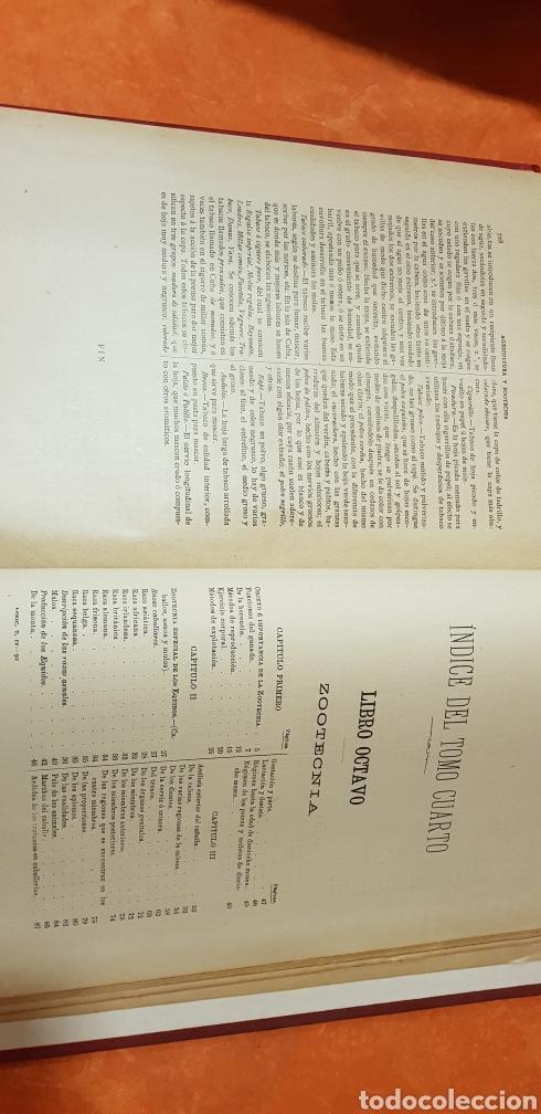 Libros antiguos: TRATADO DE AGRICULTURA Y ZOOTECNICA,5 TOMOS COMPLTA,1889- - Foto 18 - 168457249