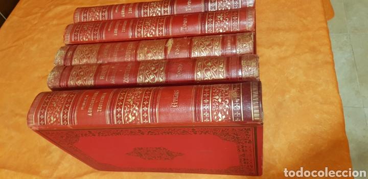 Libros antiguos: TRATADO DE AGRICULTURA Y ZOOTECNICA,5 TOMOS COMPLTA,1889- - Foto 2 - 168457249