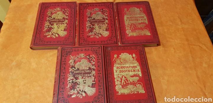 TRATADO DE AGRICULTURA Y ZOOTECNICA,5 TOMOS COMPLTA,1889- (Libros Antiguos, Raros y Curiosos - Ciencias, Manuales y Oficios - Bilogía y Botánica)