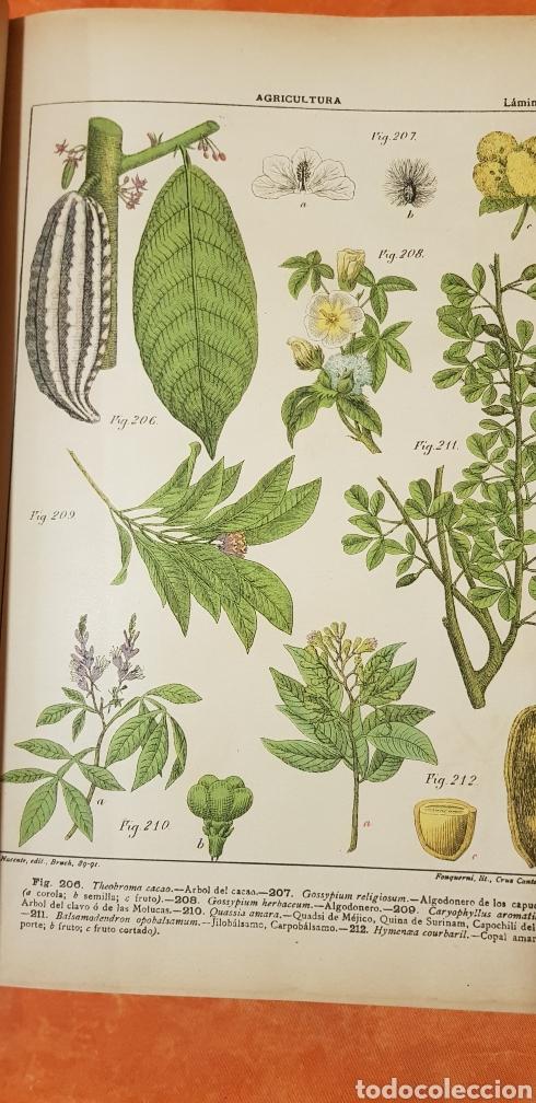 Libros antiguos: TRATADO DE AGRICULTURA Y ZOOTECNICA,5 TOMOS COMPLTA,1889- - Foto 9 - 168457249