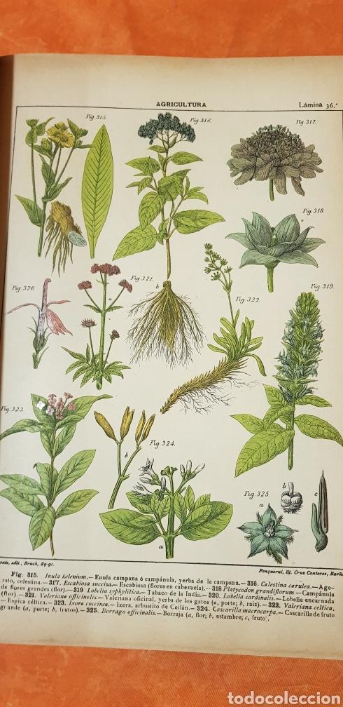 Libros antiguos: TRATADO DE AGRICULTURA Y ZOOTECNICA,5 TOMOS COMPLTA,1889- - Foto 10 - 168457249