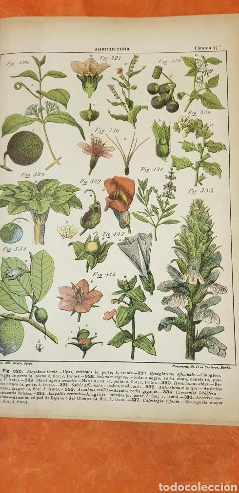 Libros antiguos: TRATADO DE AGRICULTURA Y ZOOTECNICA,5 TOMOS COMPLTA,1889- - Foto 7 - 168457249