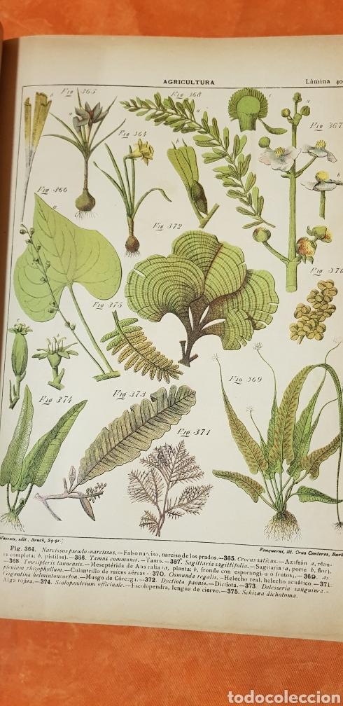 Libros antiguos: TRATADO DE AGRICULTURA Y ZOOTECNICA,5 TOMOS COMPLTA,1889- - Foto 11 - 168457249