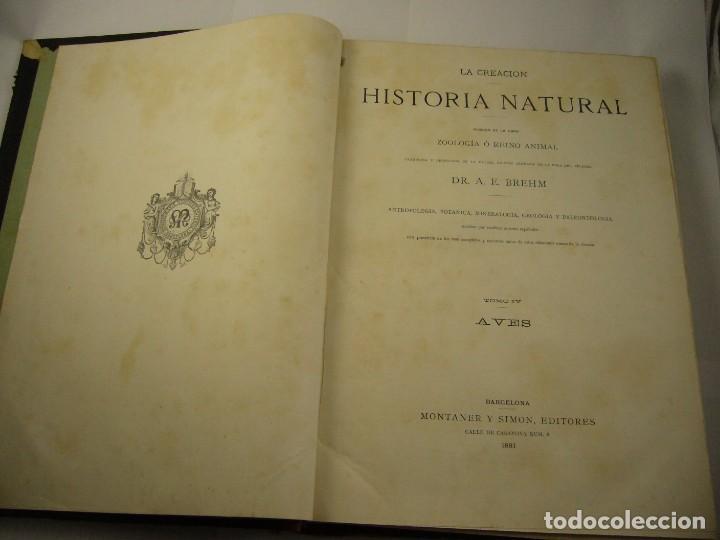 HISTORIA NATURAL , LA CREACION TOMO IV, AVES 1881 . ED, MONTANER Y SIMON , BARCELONA 575 .PAG (Libros Antiguos, Raros y Curiosos - Ciencias, Manuales y Oficios - Biología y Botánica)