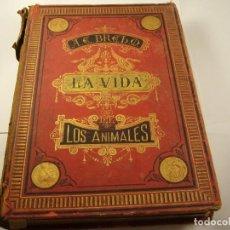 Libros antiguos: LA VIDA DE LOS ANIMALES . DR. BREHM, TOMO I, MAMIFEROS 1880 . A. RUIDOR Y CIA , 532 PAG. Lote 168627604