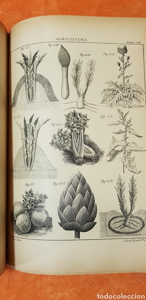 Libros antiguos: TRATADO DE AGRICULTURA Y ZOOTECNICA,5 TOMOS COMPLTA,1889- - Foto 26 - 168457249