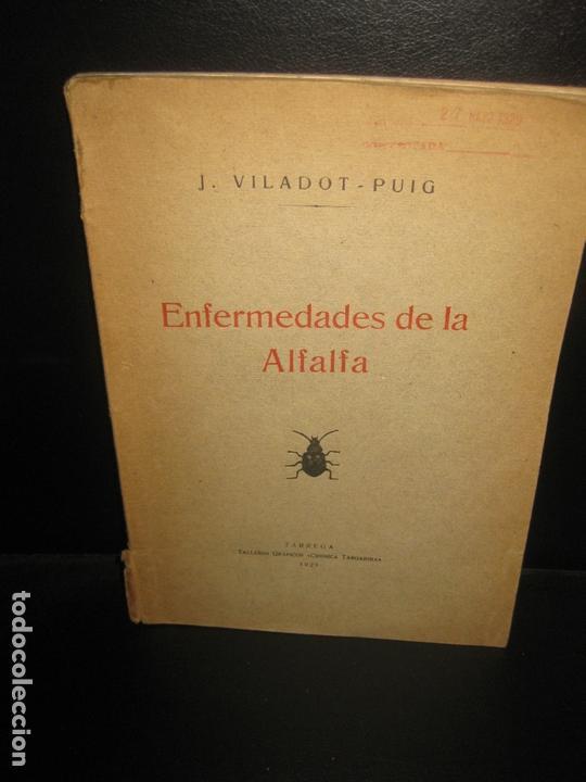 ENFERMEDADES DE LA ALFALFA. J. VILADOT - PUIG. TARREGA. TALLERES GRAFICOS CRONICA TARGARINA. 1929. (Libros Antiguos, Raros y Curiosos - Ciencias, Manuales y Oficios - Bilogía y Botánica)