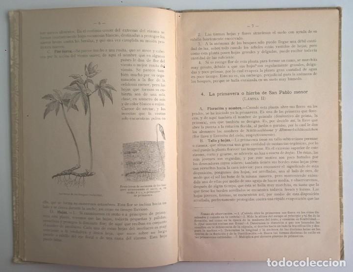 Libros antiguos: NOCIONES DE HISTORIA NATURAL - PRIMER GRADO (DR.OTTO SCHMEIL) - A.CABALLERO Y F.PARDILLO - AÑO 1926 - Foto 12 - 169757600