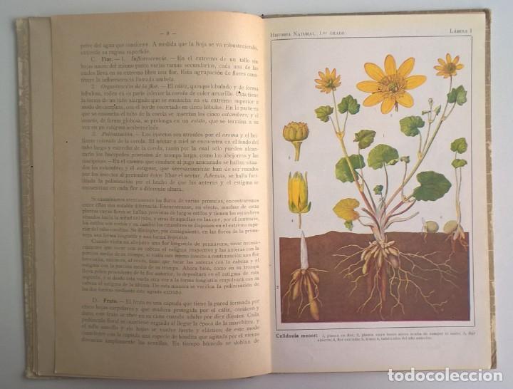 Libros antiguos: NOCIONES DE HISTORIA NATURAL - PRIMER GRADO (DR.OTTO SCHMEIL) - A.CABALLERO Y F.PARDILLO - AÑO 1926 - Foto 13 - 169757600