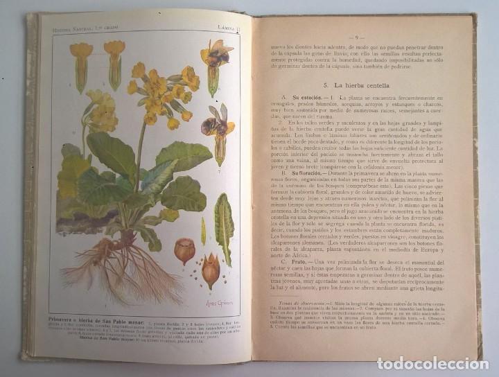 Libros antiguos: NOCIONES DE HISTORIA NATURAL - PRIMER GRADO (DR.OTTO SCHMEIL) - A.CABALLERO Y F.PARDILLO - AÑO 1926 - Foto 14 - 169757600