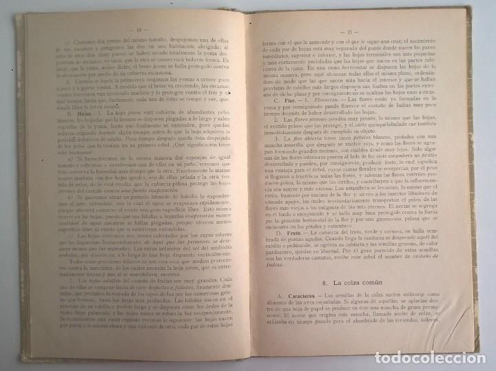 Libros antiguos: NOCIONES DE HISTORIA NATURAL - PRIMER GRADO (DR.OTTO SCHMEIL) - A.CABALLERO Y F.PARDILLO - AÑO 1926 - Foto 16 - 169757600
