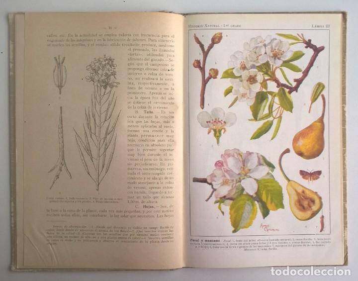 Libros antiguos: NOCIONES DE HISTORIA NATURAL - PRIMER GRADO (DR.OTTO SCHMEIL) - A.CABALLERO Y F.PARDILLO - AÑO 1926 - Foto 17 - 169757600