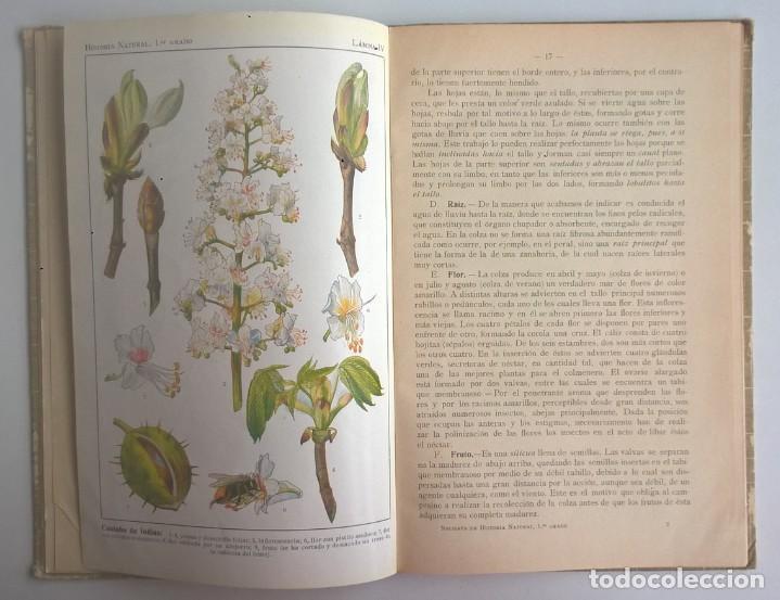Libros antiguos: NOCIONES DE HISTORIA NATURAL - PRIMER GRADO (DR.OTTO SCHMEIL) - A.CABALLERO Y F.PARDILLO - AÑO 1926 - Foto 18 - 169757600