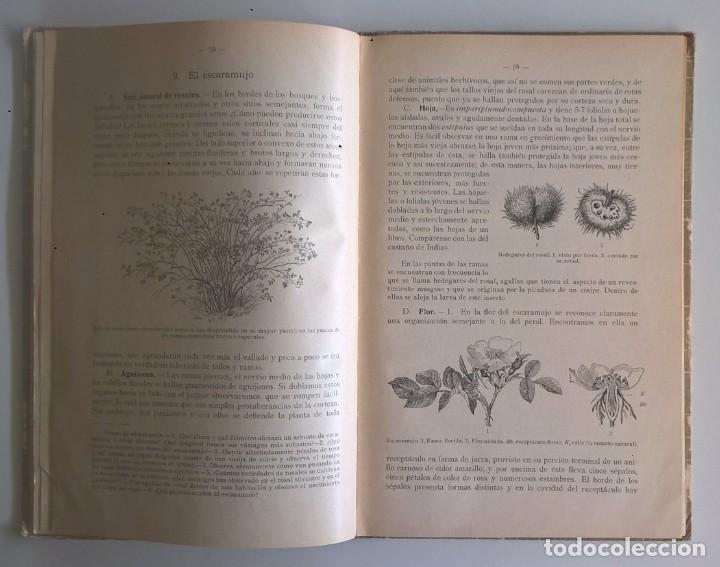 Libros antiguos: NOCIONES DE HISTORIA NATURAL - PRIMER GRADO (DR.OTTO SCHMEIL) - A.CABALLERO Y F.PARDILLO - AÑO 1926 - Foto 19 - 169757600