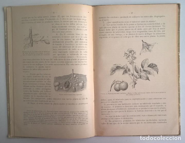 Libros antiguos: NOCIONES DE HISTORIA NATURAL - PRIMER GRADO (DR.OTTO SCHMEIL) - A.CABALLERO Y F.PARDILLO - AÑO 1926 - Foto 20 - 169757600