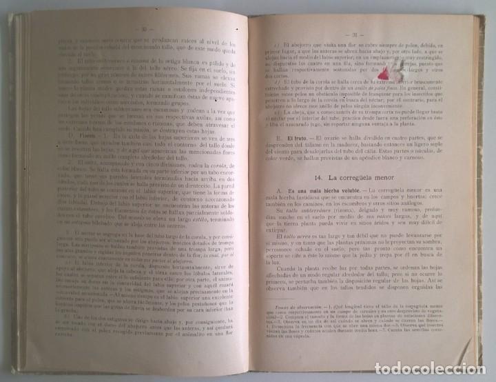 Libros antiguos: NOCIONES DE HISTORIA NATURAL - PRIMER GRADO (DR.OTTO SCHMEIL) - A.CABALLERO Y F.PARDILLO - AÑO 1926 - Foto 21 - 169757600