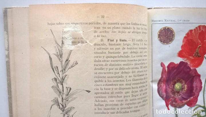 Libros antiguos: NOCIONES DE HISTORIA NATURAL - PRIMER GRADO (DR.OTTO SCHMEIL) - A.CABALLERO Y F.PARDILLO - AÑO 1926 - Foto 23 - 169757600