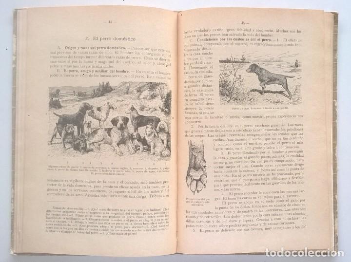 Libros antiguos: NOCIONES DE HISTORIA NATURAL - PRIMER GRADO (DR.OTTO SCHMEIL) - A.CABALLERO Y F.PARDILLO - AÑO 1926 - Foto 26 - 169757600