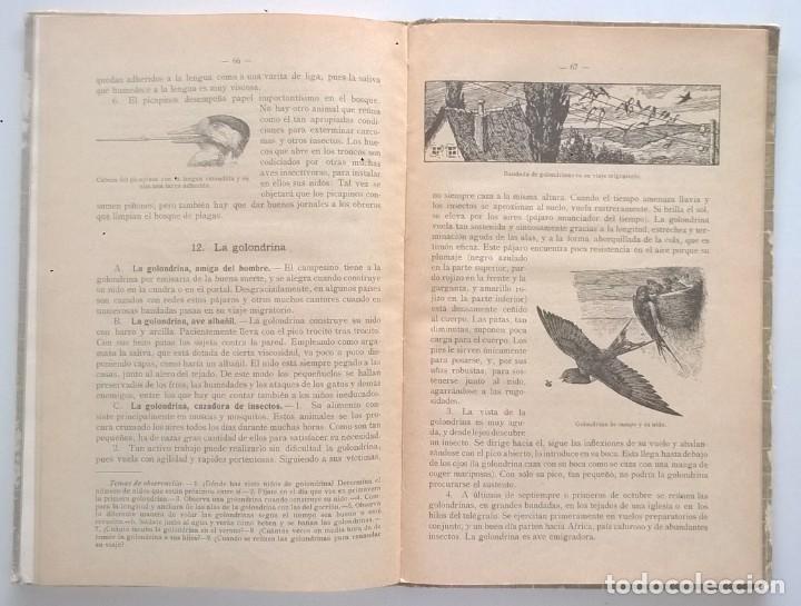 Libros antiguos: NOCIONES DE HISTORIA NATURAL - PRIMER GRADO (DR.OTTO SCHMEIL) - A.CABALLERO Y F.PARDILLO - AÑO 1926 - Foto 33 - 169757600