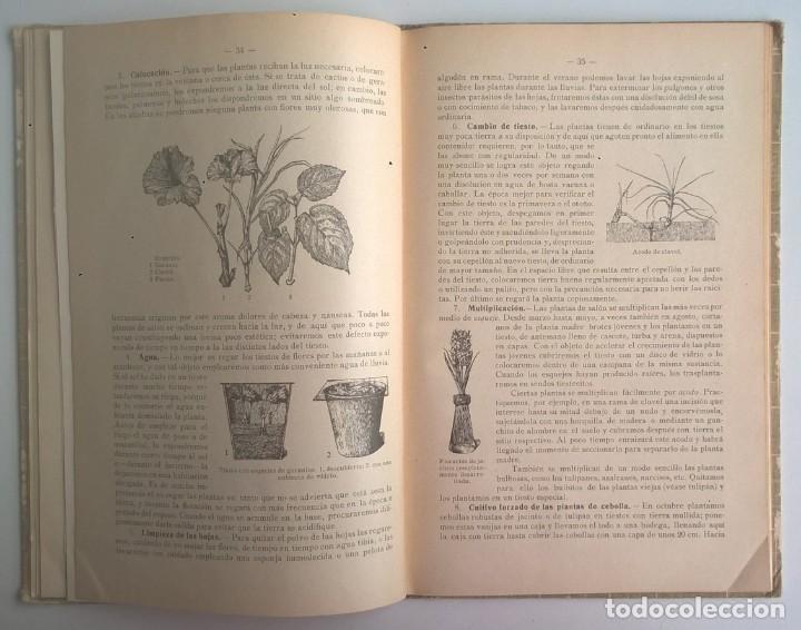 Libros antiguos: NOCIONES DE HISTORIA NATURAL - PRIMER GRADO (DR.OTTO SCHMEIL) - A.CABALLERO Y F.PARDILLO - AÑO 1926 - Foto 25 - 169757600