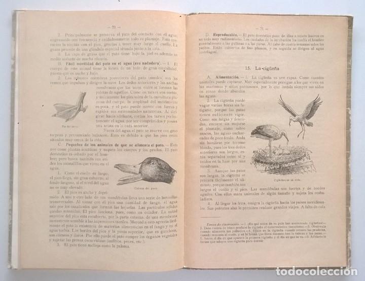 Libros antiguos: NOCIONES DE HISTORIA NATURAL - PRIMER GRADO (DR.OTTO SCHMEIL) - A.CABALLERO Y F.PARDILLO - AÑO 1926 - Foto 34 - 169757600