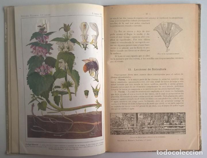 Libros antiguos: NOCIONES DE HISTORIA NATURAL - PRIMER GRADO (DR.OTTO SCHMEIL) - A.CABALLERO Y F.PARDILLO - AÑO 1926 - Foto 24 - 169757600