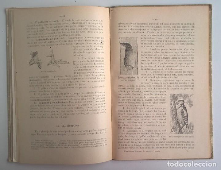 Libros antiguos: NOCIONES DE HISTORIA NATURAL - PRIMER GRADO (DR.OTTO SCHMEIL) - A.CABALLERO Y F.PARDILLO - AÑO 1926 - Foto 32 - 169757600