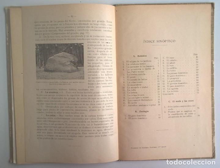 Libros antiguos: NOCIONES DE HISTORIA NATURAL - PRIMER GRADO (DR.OTTO SCHMEIL) - A.CABALLERO Y F.PARDILLO - AÑO 1926 - Foto 37 - 169757600