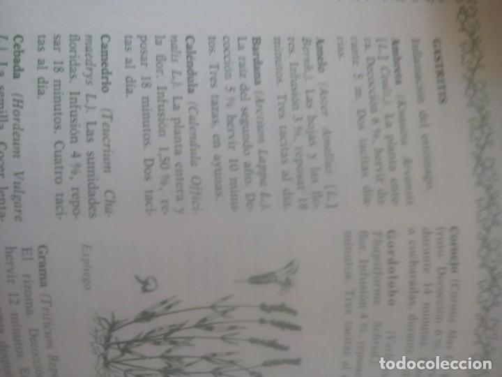 Libros antiguos: Como curarse con las hierbas medicinales Eugenio G. Vaga - Foto 2 - 170312236