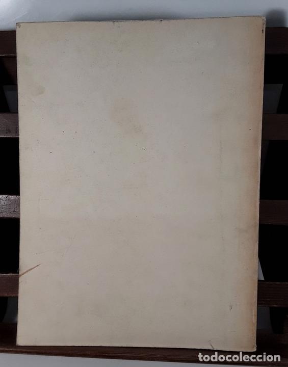 Libros antiguos: TIPOLOGÍA LÍTICA. SUPLEMENTO Nº4. JOSE MARIA MERINO. MUNIBE. SAN SEBASTÍAN. 1980. - Foto 9 - 170533880
