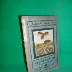 Libros antiguos: ATLAS DE ESCARABAJOS Y OTROS INSECTOS, ED. SEITHER, 1923. Lote 170844185