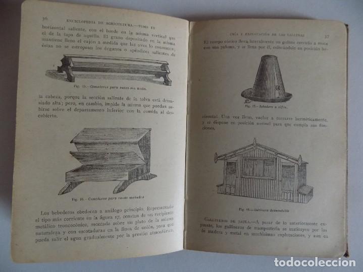 Libros antiguos: LIBRERIA GHOTICA. POCH NOGUER. LAS AVES DE CORRAL. 1890.ILUSTRADO CON NUMEROSOS GRABADOS. - Foto 3 - 171628438