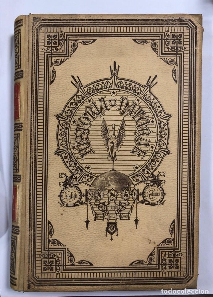 Libros antiguos: ZOOLOGIA. HISTORIA NATURAL. DOCTOR C. CLAUS. TOMO SEXTO. BARCELONA, 1892. PAGINAS: 334 - Foto 2 - 172750012