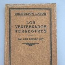 Libros antiguos: LOS VERTEBRADOS TERRESTRES, PROF. LUIS LOZANO REY, PROF. LUIS LOZANO REY, 1931. Lote 172750242