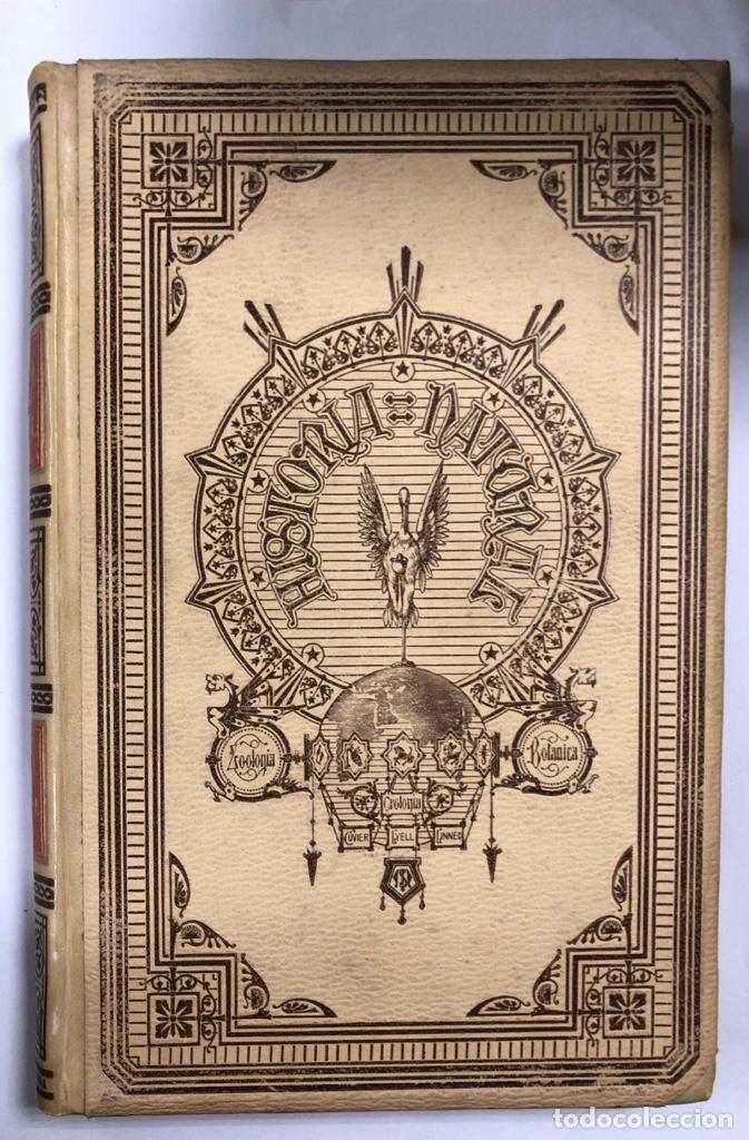 Libros antiguos: ZOOLOGIA. HISTORIA NATURAL. DOCTOR C. CLAUS. TOMO QUINTO. BARCELONA, 1891. PAGINAS: 350 - Foto 2 - 172750587