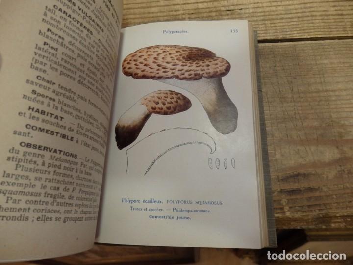 Libros antiguos: MICOLOGIA, LES CHAMPIGNONS DE FRANCE, 2 TOMOS, 1926 Y 1927, EN FRANCES, MAGNIFICO - Foto 7 - 174211167