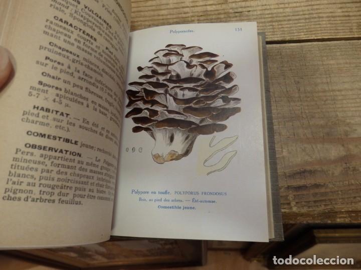 Libros antiguos: MICOLOGIA, LES CHAMPIGNONS DE FRANCE, 2 TOMOS, 1926 Y 1927, EN FRANCES, MAGNIFICO - Foto 8 - 174211167