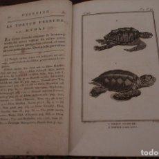 Libros antiguos: BUFFON - DUFART. HISTOIRE NATURELLE, GENERALE DES REPTILES. TOMO 2 HISTORIA NATURAL. Lote 176034637