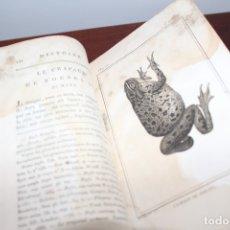 Libros antiguos: BUFFON - DUFART. HISTOIRE NATURELLE, GENERALE DES REPTILES. TOMO 8 HISTORIA NATURAL. Lote 176035018