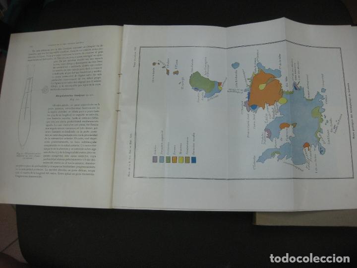 Libros antiguos: MEMORIAS DE LA REAL SOCIEDAD ESPAÑOLA DE HISTORIA NATURAL. TOMO XV. (F. 1-2) MADRID 1929 - Foto 2 - 176820258
