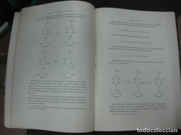 Libros antiguos: MEMORIAS DE LA REAL SOCIEDAD ESPAÑOLA DE HISTORIA NATURAL. TOMO XV. (F. 1-2) MADRID 1929 - Foto 6 - 176820258
