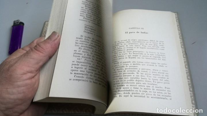 Libros antiguos: AVICULTURA - J TREVISANI - GUSTAVO GILI 1931 - VERSION ARTURO CABALLERO/ CO 31 - Foto 12 - 177626344