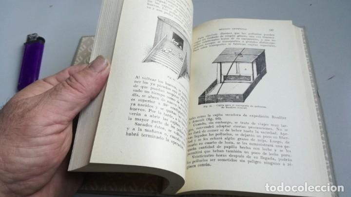 Libros antiguos: AVICULTURA - J TREVISANI - GUSTAVO GILI 1931 - VERSION ARTURO CABALLERO/ CO 31 - Foto 14 - 177626344