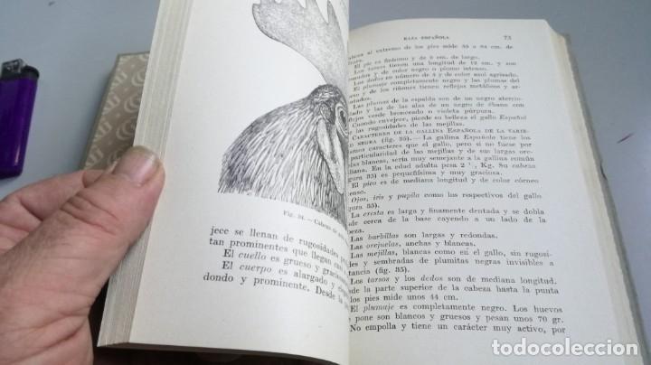 Libros antiguos: AVICULTURA - J TREVISANI - GUSTAVO GILI 1931 - VERSION ARTURO CABALLERO/ CO 31 - Foto 21 - 177626344