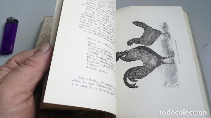 Libros antiguos: AVICULTURA - J TREVISANI - GUSTAVO GILI 1931 - VERSION ARTURO CABALLERO/ CO 31 - Foto 28 - 177626344