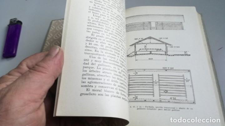 Libros antiguos: AVICULTURA - J TREVISANI - GUSTAVO GILI 1931 - VERSION ARTURO CABALLERO/ CO 31 - Foto 32 - 177626344