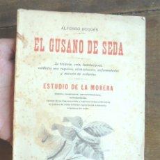 Libros antiguos: EL GUSANO DE SEDA. ESTUDIO DE LA MORERA ALFONSO NOGUÉS 1907 LIBRERÍA DE FRANCISCO PUIG, BARCELONA. Lote 177752429