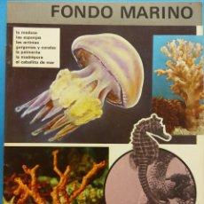 Libros antiguos: REINO ANIMAL PARA NIÑOS. CUADERNO Nº 20. FONDO MARINO. EDITORIAL RAMON SOPENA. Lote 194267380